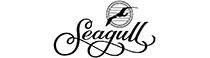 Musicant führt Instrumente von Seagull